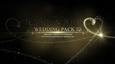 Wedding 16101773 - Project for After Effects (Videohive)