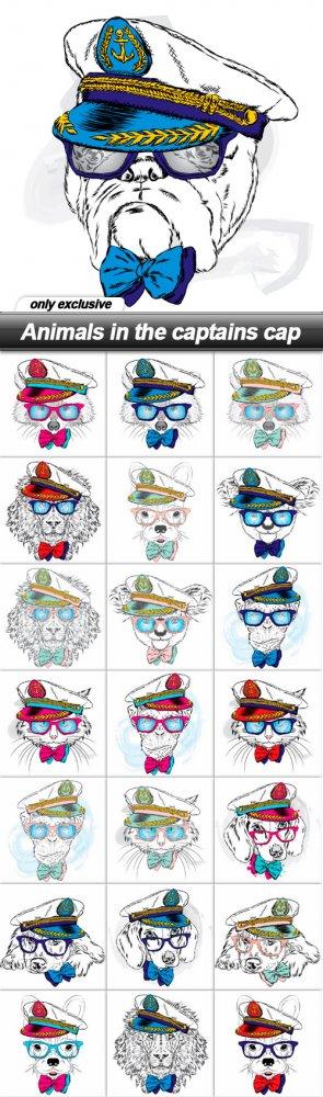 Animals in the captains cap