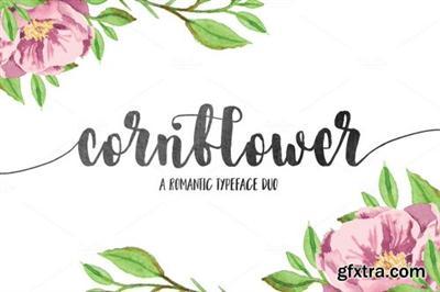 CreativeMarket Cornflower DUO 730181