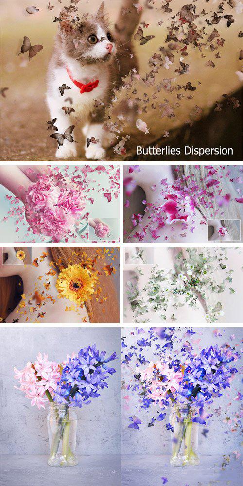 Creativemarket - Butterflies Dispersion
