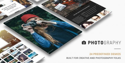 Nulled Photography v2.4.3 - Responsive Photography Theme snapshot