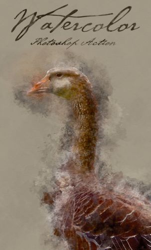 GraphicRiver -- Watercolor Photoshop Action!