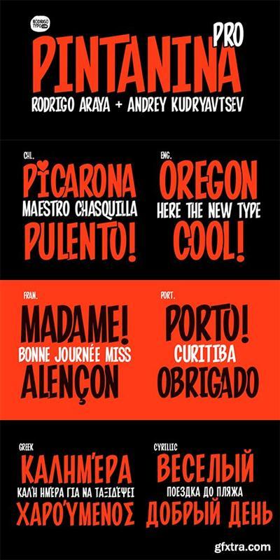 Pintanina Pro Font Family - 2 Fonts $50