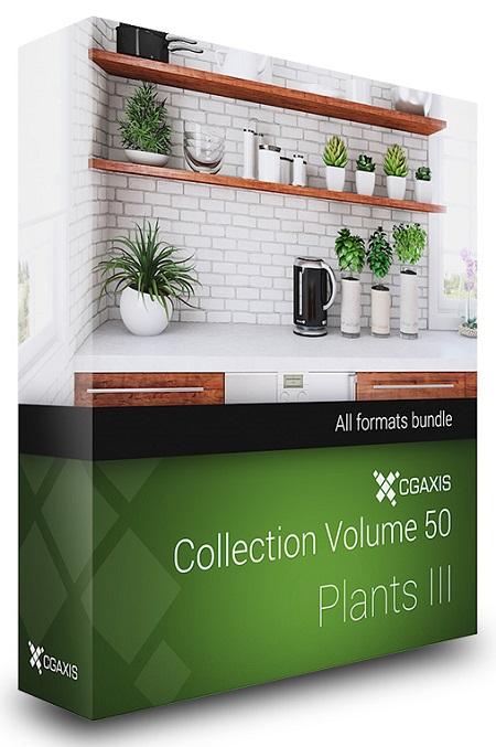 CGAxis Models Volume 50 3D Plants III
