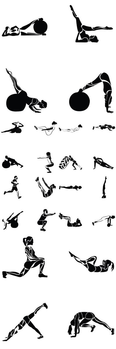 Vector Fitness Exercises