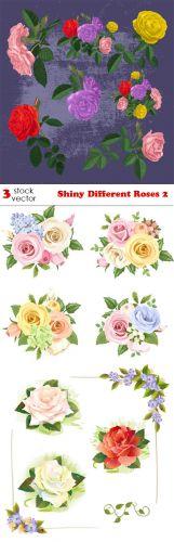 Vectors - Shiny Different Roses 2