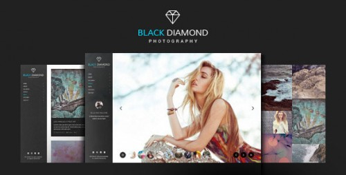 Nulled DIAMOND v1.9.4 - Photography WordPress Theme