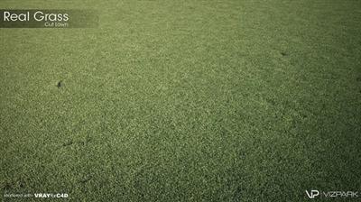 Vizpark Real Grass 3DsMax GrowFX